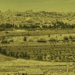 izrael fundacja bless